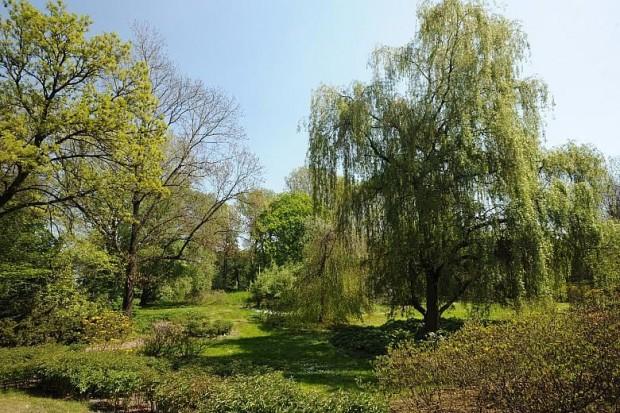 Park Aleksandry